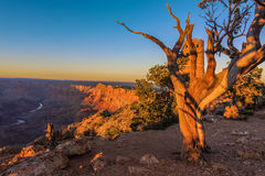 Majestic Vista of the Grand Canyon at Dusk. Beautiful Landscape of Grand Canyon from Desert View Point during dusk royalty free stock image