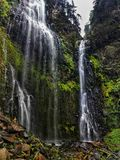 Majestic waterfall in the rainforest of Mexico city royalty free stock photo