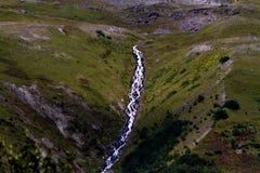 Majestic Waterfall. A majestic waterfall runs down a beautiful green hillside Stock Image
