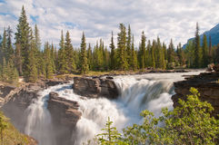 Majestic waterfalls with forest Royalty Free Stock Images