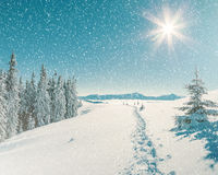 Majestic winter landscape Royalty Free Stock Photos