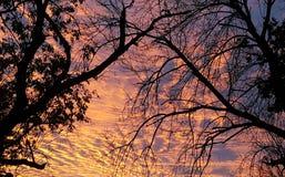 majestic wschód słońca Zdjęcia Royalty Free