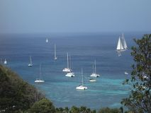 A majestic yacht under sail in admiralty bay stock video footage
