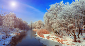 Majestik冬天场面 库存照片