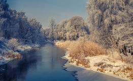 Majestik-Winterszene Lizenzfreie Stockbilder