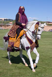 Majestueus Arabisch Paard Stock Afbeelding