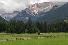 Majestueus landschap van rotsachtige bergen bij gouden zonsondergang in Dolomiet Nationaal Park Stock Foto's