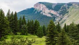 Majestueuze berg piek en hellende die helling met weelderig bos dichtbij Bozeman, Montana wordt behandeld royalty-vrije stock fotografie