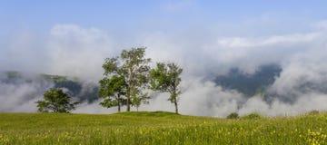 Majestueuze mening over mooie mistbergen in mistlandschap Dramatische ongebruikelijke scène De achtergrond van de reis Het onderz Royalty-vrije Stock Foto's
