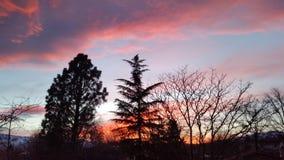 Majestueuze oranje zonsondergang Stock Foto