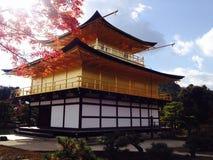 Majic Kyoto Fotografie Stock Libere da Diritti