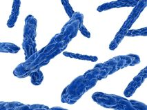 Major bacteria. 3d rendered close up of some isolated major bacteria Stock Images