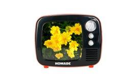 Major Household Appliance Images libres de droits