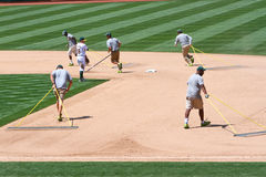 Major League Baseball - Oakland Grounds Crew Stock Photo
