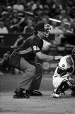 Major League Umpire. Getting set behind home plate royalty free stock images