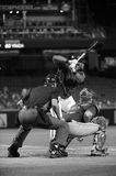 Major League Umpire. Standing behind home plate waiting for the pitch to be thrown Royalty Free Stock Images