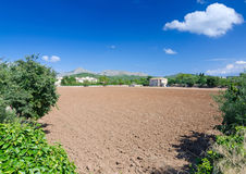 Majorca agricultural landscape Royalty Free Stock Image