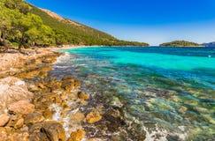 Majorca beach seaside of Platja de Formentor. Platja de Formentor, beautiful beach at cap formentor, Mallorca Spain Royalty Free Stock Image