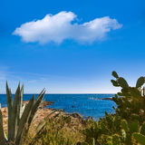 Majorca Cala Bona beach Son Servera Mallorca Royalty Free Stock Photos