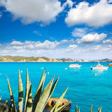 Majorca Cala Fornells beach Paguera Peguera Stock Photography