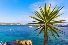 Majorca Cala Fornells beach Paguera Peguera. Calvia in Mallorca at Balearic island of Spain Stock Images