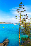 Majorca Cala Fornells beach Paguera Peguera. Calvia in Mallorca at Balearic island of Spain stock image