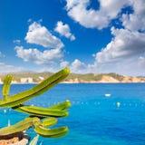 Majorca Cala Fornells plaża Paguera Peguera fotografia stock