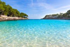 Majorca Cala Gran Dor strand i Mallorca Santanyi Arkivfoton