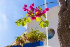 Majorca Cala Ratjada Rajada w Capdepera Mallorca Obraz Royalty Free