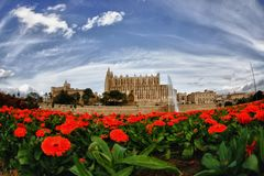 Majorca cathedral Royalty Free Stock Photos