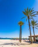 Beautiful beach with palms at seaside of bay of Alcudia on Mallorca, Spain. Majorca island, sand beach with palm trees at bay of Alcudia, Spain Mediterranean Sea Royalty Free Stock Photo