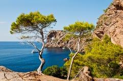 Majorca island, Spain Stock Image
