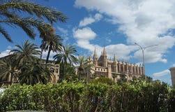 Majorca katedra Zdjęcie Royalty Free