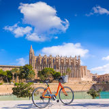Majorca Palma Cathedral Seu and bicycle Mallorca Stock Photography