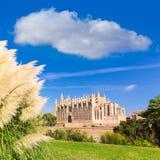Majorca Palma Cathedral Seu Seo of Mallorca. At Balearic Islands Spain Stock Images