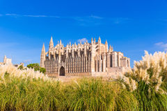 Majorca Palma Cathedral Seu Seo of Mallorca. At Balearic Islands Spain Stock Photos