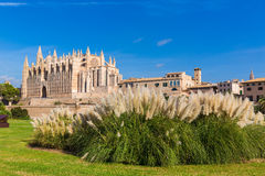 Majorca Palma Cathedral Seu Seo of Mallorca. At Balearic Islands Spain Royalty Free Stock Image