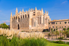 Majorca Palma Cathedral Seu Seo of Mallorca Stock Images
