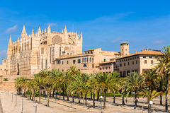 Majorca Palma Cathedral Seu Seo of Mallorca. At Balearic Islands Spain Royalty Free Stock Images
