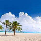 Majorca Platja Palmanova beach in Calvia Bol Teules Stock Images
