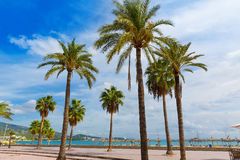 Majorca Platja Palmanova beach Son Maties Mallorca Royalty Free Stock Images