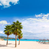 Majorca Platja Palmanova beach Son Maties Mallorca Stock Photography