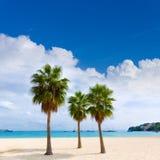 Majorca Platja Palmanova beach Son Maties Mallorca Royalty Free Stock Images