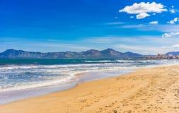 Spain Majorca, beautiful seaside landscape at beach of Alcudia. Majorca sand beach at bay of Alcudia, Spain Balearic islands, Mediterranean Sea Royalty Free Stock Photos