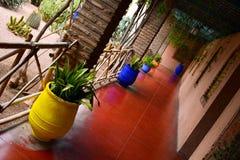 Majorelle cultiva un huerto interior colorido Imagen de archivo libre de regalías