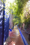 Majorelle garden detail (Home of Yves Saint-Laurent) Stock Photos