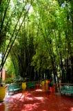 Majorelle garden Royalty Free Stock Image