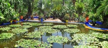 Majorelle Garden pond Stock Photo