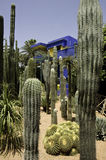 Majorelle Gardens. Is the Majorelle Gardens with Cactii, bamboo and colourful flowers Stock Photo