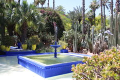 Majorelle Gardens - Marrakech. Inside the Majorelle Gardens - Marrakech. Where he lived Yves Saint-Laurent Stock Image
